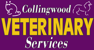Collingwood Veterinary Service
